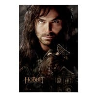 Limited Edition Artwork: Kili Posters from Zazzle.com