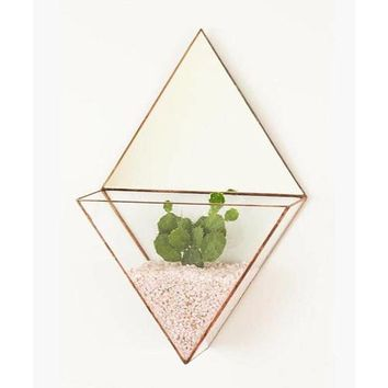 Geometric glass terrarium - Wall planter indoor -