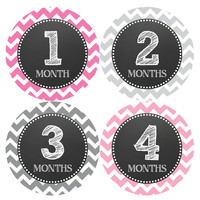 Baby Girl Monthly Milestone Birthday Stickers Style #069