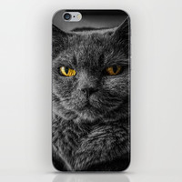 Cat Portrait iPhone Skin by Knm Designs