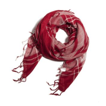Red Plaid Tassel Scarf for Travel