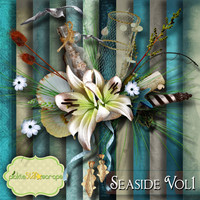 Seaside Vol1 - Digital Scrapbook Kit - Including ALPHA - Printable Backgrounds - 12x12 inch Papers - FREE Quickpage Layout