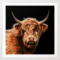 Highland Cow Art Print by Linsey Williams Art