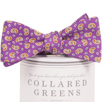 Alta Bow Tie Purple