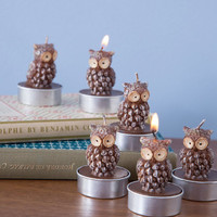 One Hundred 80 Degrees Critters Brand New Flame Candle Set