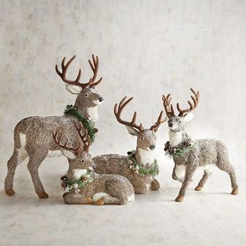 Natural Deer Collection