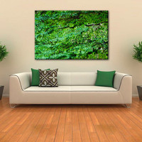 Instant Download Art, Natural Tree Bark, Canvas Art, Tree Wall Decal, Wall Decor, Green Art, Green Abstract, Wall Decal, Green Wall Art