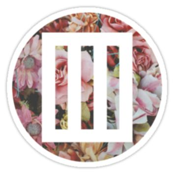 paramore bars logo over floral
