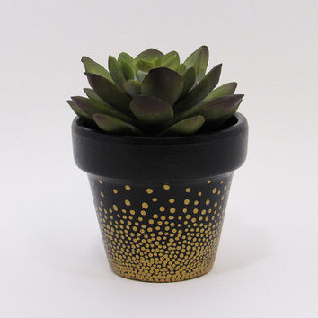 Terracotta Pot, Succulent Planter, Cute Planter, Small Pot, Black Planter, Air Plant Holder, Indoor Planter, Polka Dot Pot, Gold Planter