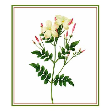 Flowering Jasmine Inspired by Pierre-Joseph Redoute Counted Cross Stitch Pattern