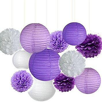 Fascola Pack of 12 Lavender Dark purple White Paper Crafts Tissue Paper Honeycomb Balls Lanterns Paper Pom Poms Birthday Wedding Party Decoration