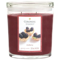 Colonial Candle Mulberry 22 oz Scented Oval Jar Candle