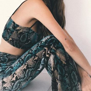 Snake Print Two Piece Outfit