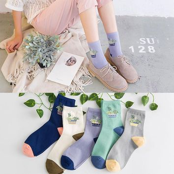 Women Cotton Socks Ladies Sokken Cute Cactus Plant Dot Funny Fashion Design Socks Novelty Harajuku Meias Femininas Chaussettes