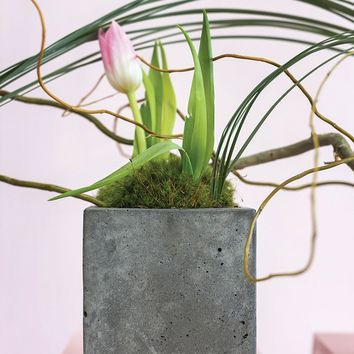"Cement Small Cube Planter - 4.75"" Tall x 4.5"" Wide"