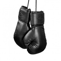 CERDAN Boxing Gloves