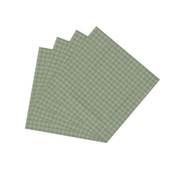 Mint Green & Gingham Checks Napkin Set of 4