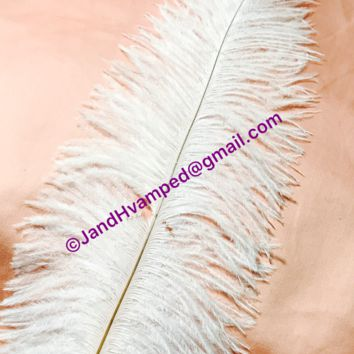 ostrich feathers 13-16 inches 10 for $7.99