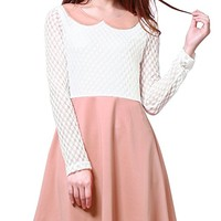 Women's Doll Collar Mesh Panel Contrast Color Above Knee Dress