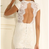 Party dresses > White Lace Bodycon Dress