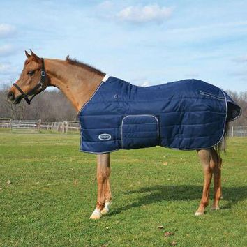 Squall 1200D Midweight Horse Stable Blanket | Country Pride Big Dee's Tack & Vet Supplies