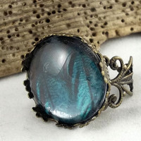 Blue Butterfly Wing and Brass Adjustable Ring by theotherstacey
