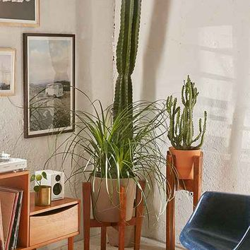Knock Down Plant Stand