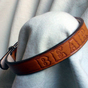 "Personalized collars, 5/8"" wide, medium, leather dog collar, black dog collar, brown dog collar, colorful collars"