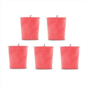 Raspberry Scented  Handmade Soy Candles – 5 Pack