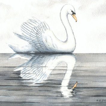 "Original Bird Painting, Swan Swimming Watercolor, White Swan in Water, Swan Reflection, Calm Water, White Bird Painting, Grey, Gray 8"" X 10"""