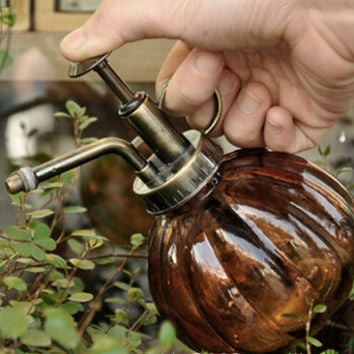 Retro Glass Watering Can