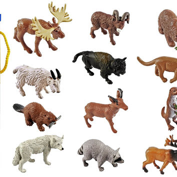 Safari Ltd Wild Safari North American Wildlife TOOB With 12 Favorite Animal Toy Figurines Including a Mountain Lion Wolf Elk Big Horn Ram Bison River Otter Raccoon Pronghorn Buck Moose Grizzly Bear and Beaver.