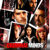 Criminal Minds 27x40 TV Poster (2005)