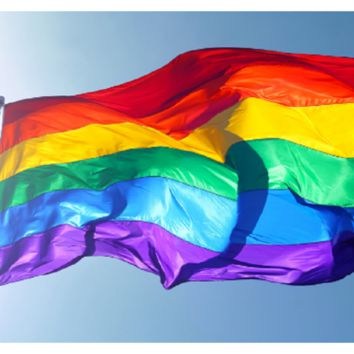 Lesbian Pride LGBT Polyester Colorful Rainbow Flag For Decoration