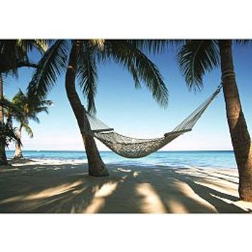 wall murals wall hangings beach wall from pbteen my