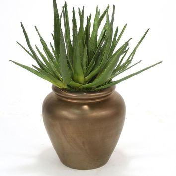 Agave Plant In Bronze Stone Water Jar
