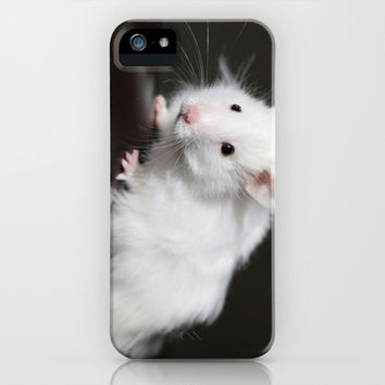 Teddy Bear Hamster iPhone & iPod Case by Sean Foreman