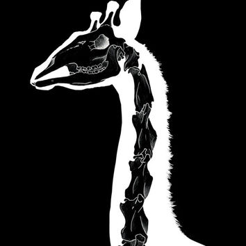 "Giraffe Skeleton Art Print. LIMITED EDITION Original africa animal illustration. A3 11.69""x16.53"" skull urban punk black and white wall-art"
