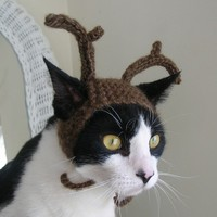 $18.00 The Reindeer Cat Hat by scooterKnits on Etsy