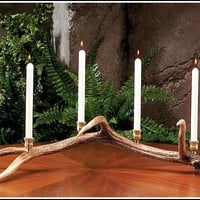 Elk Antler Candelabra with Four Candle Cups
