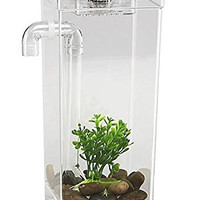 My Fun Fish Tank, 4 3/4 x 6 x 10-Inch