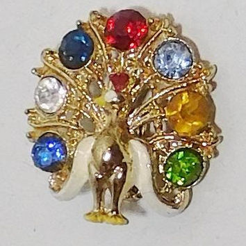 Peacock Brooch, Rhinestone, Fruit Salad Mix, Mixed Rhinestone, Painted, Gold Tone, Small, Colorful, Vintage Costume Jewelry