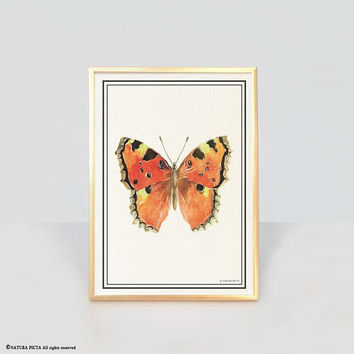 Butterfly insect art print-butterfly insect wall art-botanical wall art-botanical print-modern print-r-watercolor print-animal print-NPAG54