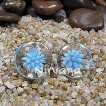 "Sea Anemone Plugs Pyrex Glass One Pair - 00g 7/16"" 1/2"" 9/16"" 5/8"" 3/4"" 1"" 9.5 mm 10 mm 12 mm 14 mm 16 mm 18 mm 20 mm 25 mm"