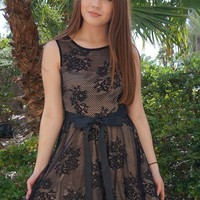 Secret Kiss Black Lace Skater Dress