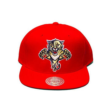 Mitchell & Ness Nhl Florida Panthers Solid Snapback In Red