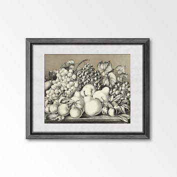 Floral still life painting - golden fruits - 8x10 Art Print from vintage lithograph / drawing of fruits on table / Still life drawing