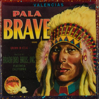 Pala Brave Brand - Vintage Citrus Crate Label - Handmade Recycled Tile Coaster