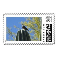 Cactus Dove Postage Stamps