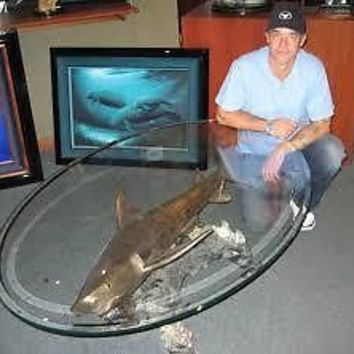 Wyland Galleries Tiger Shark Table